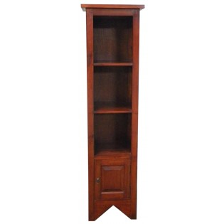 Bookcase in mahogany
